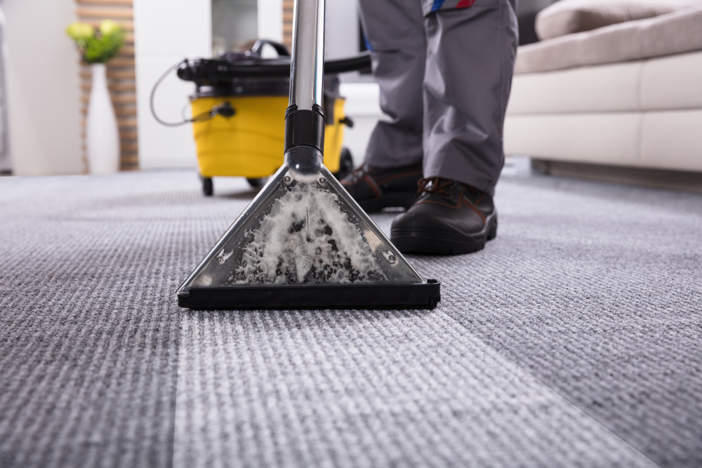Reasons Why You Need The Help of Professional Carpet Cleaning