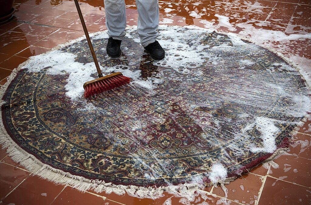 Selecting a Carpet Cleaning Method